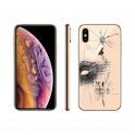 Changement vitre arrière iPhone XS landes